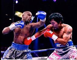 mayweather vs mp