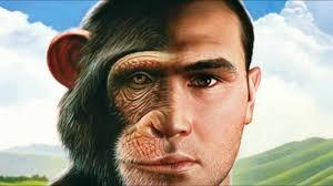 man monkey