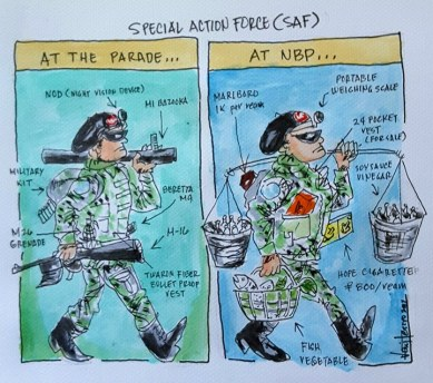 art 40 cartoon strip SAF